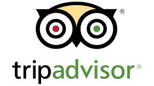 tripdvisor logo